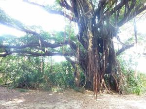 沖縄 パワースポット 旅 リトリート
